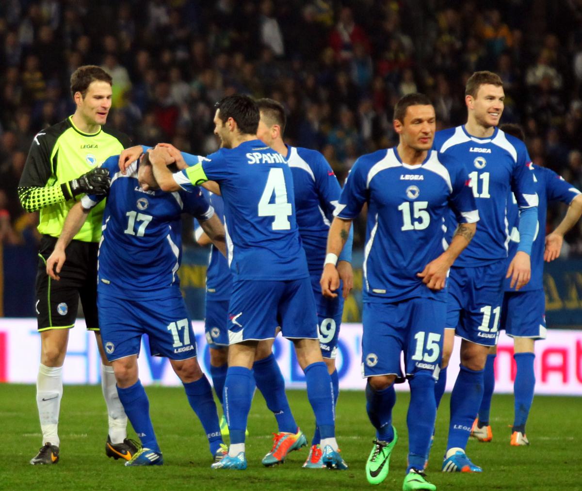 Участники ЧМ-2014. Босния и Герцеговина - изображение 4